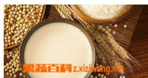 常喝豆浆的营养价值和好处